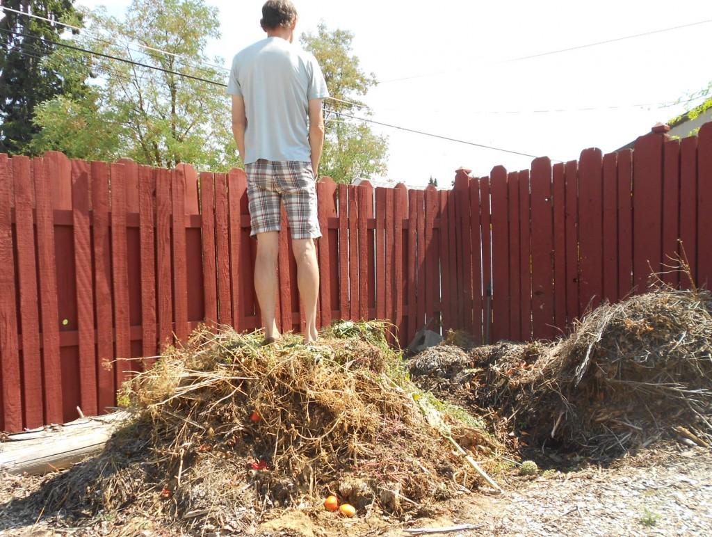 Jim's compost pile